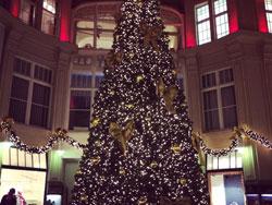 leipzig-christmas-tree2