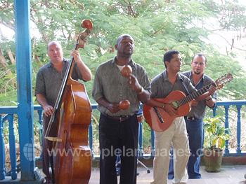 Lokale muziekanten