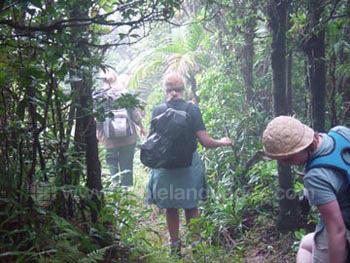 Excursie in de jungle