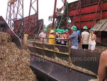 Bezoek aan de plaatselijke suikerfabriek