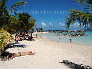 Dit strand is slechts 50 meter van onze school vandaan!