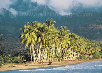 Costa Rica heeft prachtige stranden!
