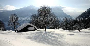 De prachtige Zwitserse Alpen in de winter!
