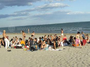 Studenten aan het relaxen op het strand
