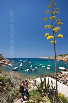 Ibiza, vol van prachtige uitzichten
