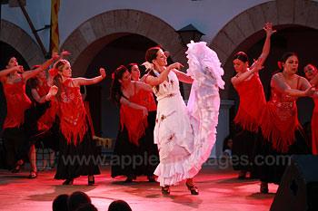 Flamenco dansen tijdens een excursie