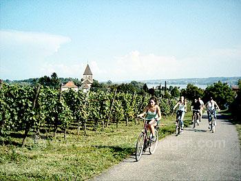 Studenten tijdens een fietstocht