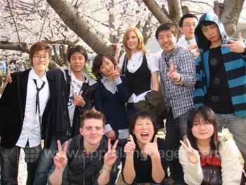 Studenten tijdens Hanami (kersenbloesem) party