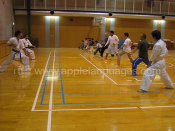japanse vechtsporten onder de knie krijgen