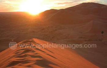 De Sahara is een klein eindje verderop