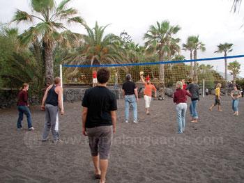 Volleyballen op het strand