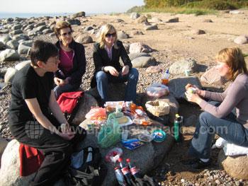 Studenten die een picknick op het strand houden