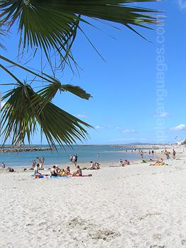 Dichtbijgelegen strand