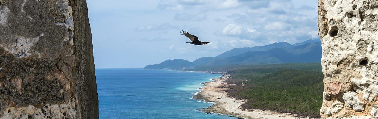 Vogel zweeft boven Santiago de Cuba