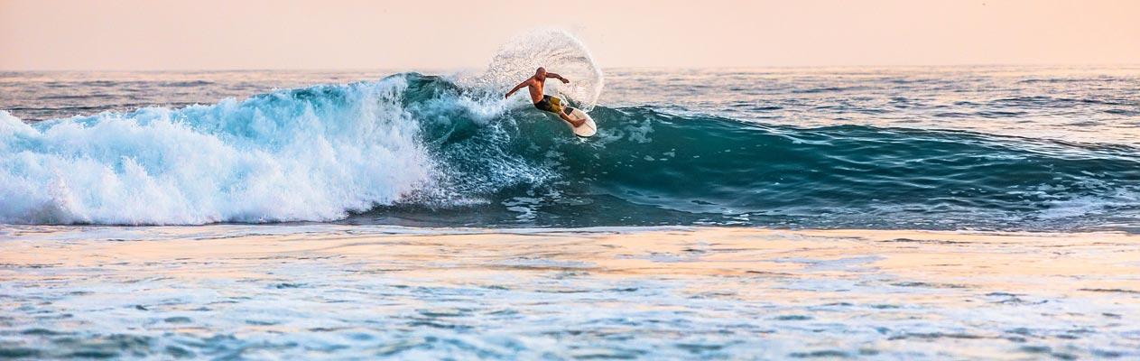 Surfcusussen
